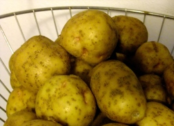 Potatoes waiting to become soup